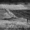 WESTERN FARMLAND & SKY